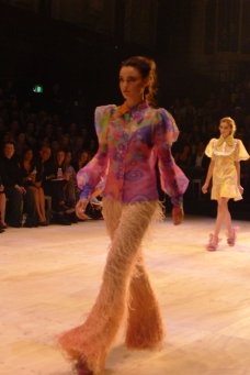 Multi colour sheer blouse with feather pants